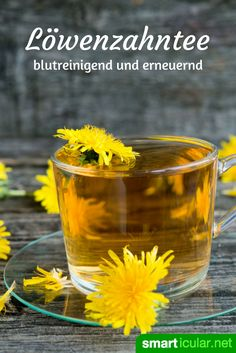 Tee muss nicht immer viel Geld kosten. Der Teeaufguss aus Löwenzahn hilft dir richtig wach zu werden, vertreibt Kopfschmerzen und hilft Gewicht zu verlieren