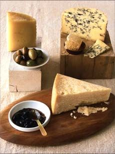 THE NIBBLE Guide to Cheese Condiments- Make Your Fine Cheese Experience Even More Exciting With The Right Cheese Accompaniments
