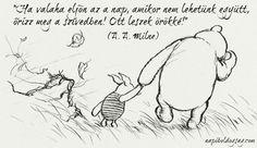 Az utóbbi időben a gyerekeimmel Micimackót olvasunk. Zsófia már elég jól érti, Nimród még nem annyira, de nagyon jó, hogy igényük van ily...