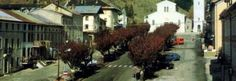 A glimpse of Foza. That the country wins the Japanese