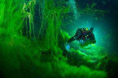"""The Magical World of Blue Lake"" by Viktor Lyagushkin"