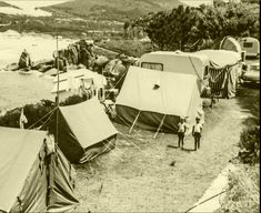 Camping in Hout Bay 1963 Old Oak Tree, Cape Town South Africa, Camping, African History, Old Pictures, Caravan, Wonders Of The World, Outdoor Living, Vacation