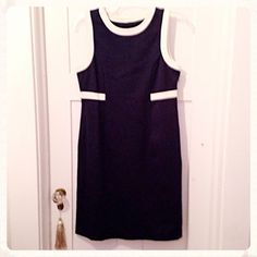 """Navy & Cream Shift dress Sz 10 Pretty navy shift dress. Navy and cream. Zip on side. Ponte knit with some stretch. Lined in a stretch acetate type material. Never worn. True size 10. Measures. Bust 19"""" across front and 20"""" across hips.  In like new condition. Very well made. Measures: 19"""" bust, 20.5"""" hips (approx). Fair offers appreciated. Dialogue Dresses"""