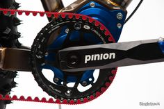 Pinion 1.18 Gearbox and belt drive on Reeb Cycles FAT Bike