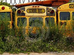 pictures of old school buses - Google Search