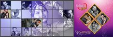 40 Indian Wedding Portrait Album Design PSD Pages Free Download   StudioPk