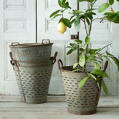 """Vintage Olive Basket $158 (From Turkey; galvanized steel; 14""""H, 16""""Diameter)"""