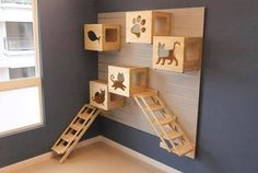 Add some carpet and some toys, and you have an ideal cat play area that doesn't take up too much space! awesome idea