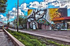 "Houston-There's an awesome graffiti mecca called the ""Kingspoint Mullet"" graffiti space – housing some of the biggest and baddest murals in Houston – may be the only legitimate reason to go near the Almeda Mall."