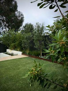 Modern Landscaping, Outdoor Landscaping, Outdoor Gardens, Australian Garden Design, Australian Native Garden, Small Backyard Design, Backyard Garden Design, House Landscape, Garden Landscape Design