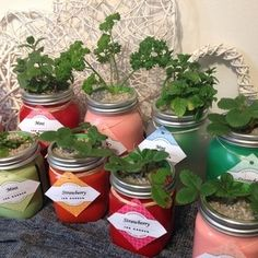 Jar Garden is a miniature hydroponic system in a jar. No messy soil or sand and only has to be topped up every 2-3 weeks. Prices R110 - R120 (excluding postage).  Contact us on jargardenhydro@gmail.com or 0822566867 and we would gladly assist.