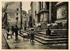 1927 Palermo Sicily Cathedral Steps Goats People Italy - ORIGINAL PHOTOGRAVURE