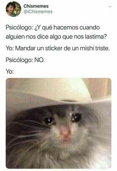 Best Memes, Dankest Memes, Jokes, Funny Spanish Memes, Funny Relatable Memes, Cute Memes, Cute Funny Animals, Really Funny, Instagram