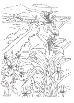 Creative Haven Country Scenes Coloring Book 030126 Details