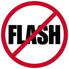 no flash photography