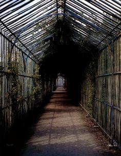 The Last Garden of Versailles http://markdsikes.com/2013/04/28/the-last-garden-at-versailles-paris-2013/