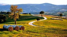 Walk with us through the Italian landscape to check if it's the right time to harvest....https://twitter.com/FraERBEskincare/status/578564150726635520