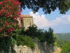 Ervina Belac, Groznjan, Istria, Croatia.