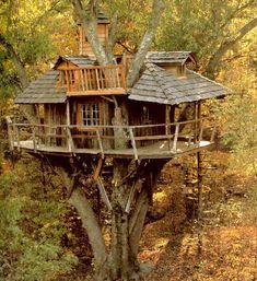 maison dans les arbres avec super escalier