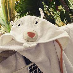 Martin le lapin en vacances sous les palmiers !;) ☀️#aleaulesloulous #enfants