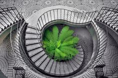 Steps at Embarcadero Center, San Francisco, Calofornia, USA. Photo by Daniel Huron