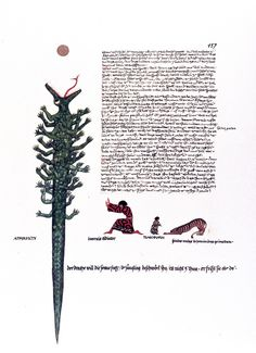Image from Carl Jung's Red Book www.jungcurrents.com .