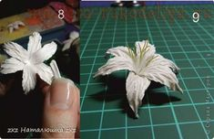 Мастер-класс по скрапбукингу: Цветы лилии