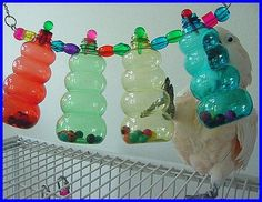 Bottles with beads parrot toy...... Interesting idea that has so many possibilities. Could vary the contents of the bottles and the bottles themselves.