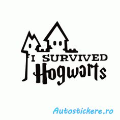 Survived Hogwarts I Survived, Hogwarts, Survival, Calm, Stickers, Funny, Instagram, Funny Parenting, Hilarious