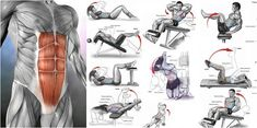 What is a good six pack workout? I don't know about you but if you are anything like me, I had allot of trouble for years trying to get a good six pack abs workout! The one