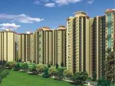 Noida Real Estate @ http://www.grihapraveshindia.com/