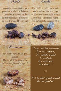 fèves de cacao cru                                                                                                                                                                                 Plus