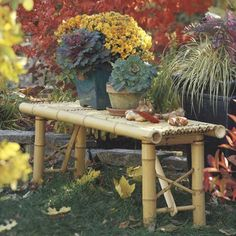 bamboo landscaping ideas   old garden bench with flowers backyard ideas creative ideas for ...