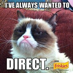"Grumpy Cat was notably grumpy while shooting ""Will Kitty Play With It?"" the only game s how for cats."