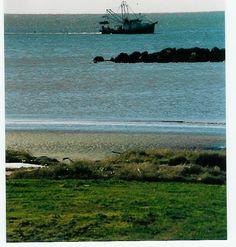 Louisianna - Holly Beach