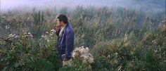 Greg Gerke | Andrei Tarkovsky's Solaris in Mind | The Nervous Breakdown