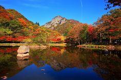 한국의 가을