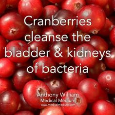 Cranberries Health Facts, Health And Nutrition, Health And Wellness, Health Fitness, Women's Health, Health Care, Fruit Benefits, Health Benefits, Herbal Remedies