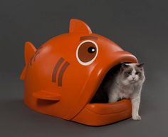 Fish Litter Box