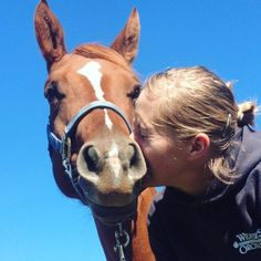 Reasons Your Horse is Your Best Friend