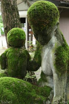 Beautiful Mossy Stone Statue: Jizo of Mother and Child (Niigata, Japan)|苔むした親子石像