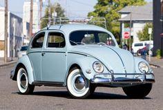 Classic Beetle Volkwagen