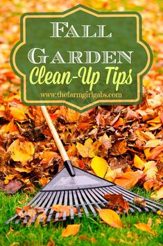 Fall Gardening Clean-Up Tips - Prep your gardens for winter. From How Does Your Garden Grow? ~ www.thefarmgirlgabs.com