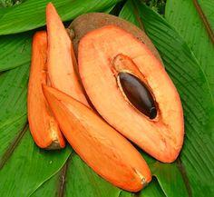 Zapote: Sapote (Mamey in Mexico) is a soft flavored, fleshy fruit - distinct in flavor. The darker the orange color, the better.