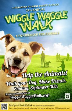 The 14th Annual Wiggle Waggle Walk – A Fundraiser for Animals is Sunday, September 30! ! Your efforts help provide quality food, safe shelter, and veterinary care for the 12,000 animals the Pasadena Humane Society & SPCA cares for every year. Register today at www.wigglewagglewalk.org