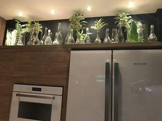 Ideia plantas na cozinha