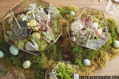 fresh thought Terrarium Centerpiece Diy style and design - Terrarium Centerpie. fresh thought Terrarium Centerpiece Diy style and design - Terrarium Centerpiece wedding Terrarium Terrarium Wedding Centerpiece, Mirror Centerpiece, Non Floral Centerpieces, Rustic Wedding Centerpieces, Terrarium For Sale, Succulent Terrarium, Terrariums, Online Florist, Cool Diy Projects