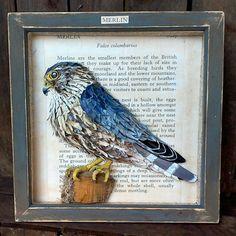 Merlin bird picture, bird of prey, blue bird, papier mache, paper original art, British bird, hunting bird, blue picture, aged wood frame.
