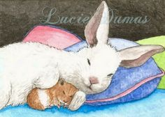 ACEO art print Hare 30 bunny rabbit hamster by Lucie by artbyLucie, $5.00