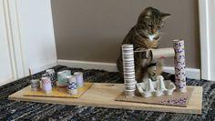 Top Die 26 besten Bilder von Katzenspielzeug selber basteln in 2019 GY23